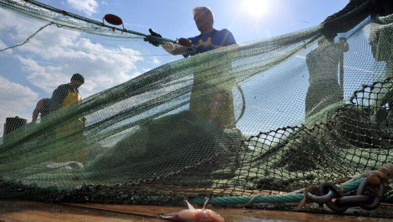 Рыболовная сеть, рыбалка, рыбаки