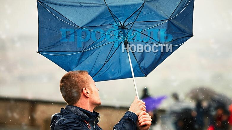 зонт выгнулся от ветра.