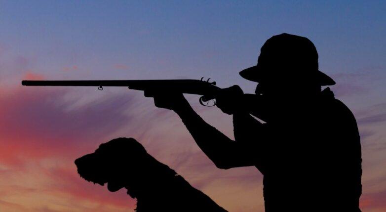 Охотник, охота, ружье