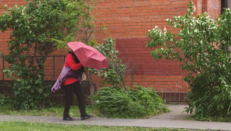 Погода ветер ураган шторм дождь зонтик