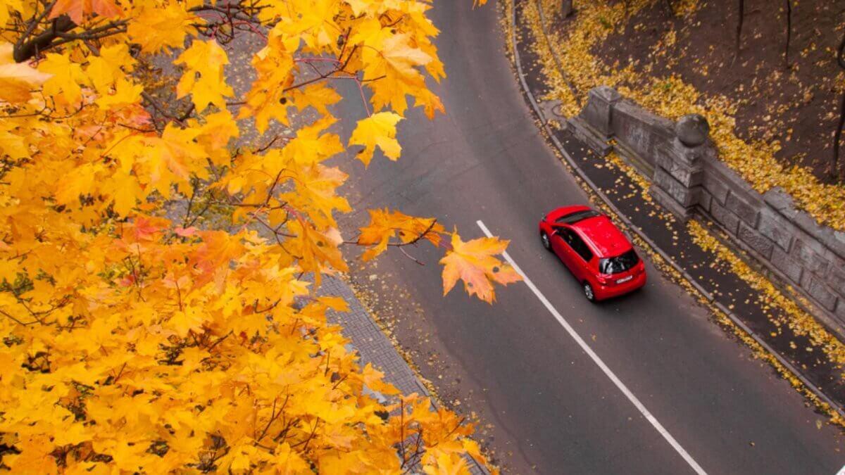 Водителям напомнили об особенностях управления авто осенью
