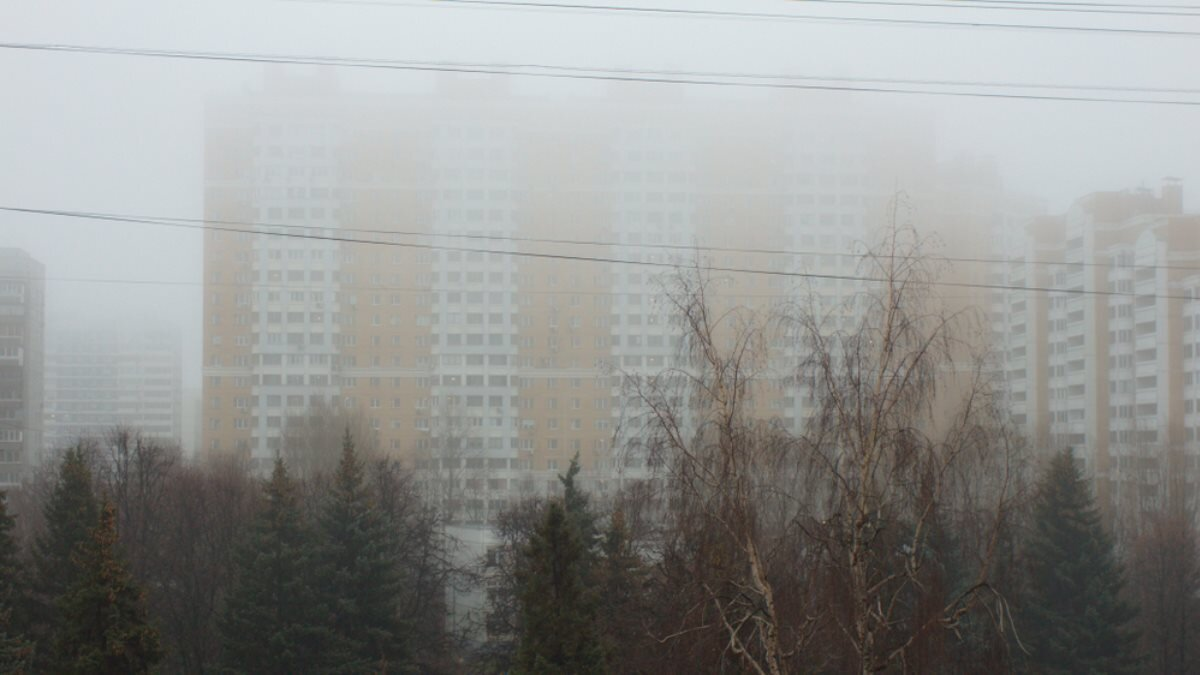 Погода туман город Москва один