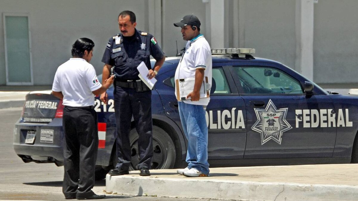 полиция мексики авто