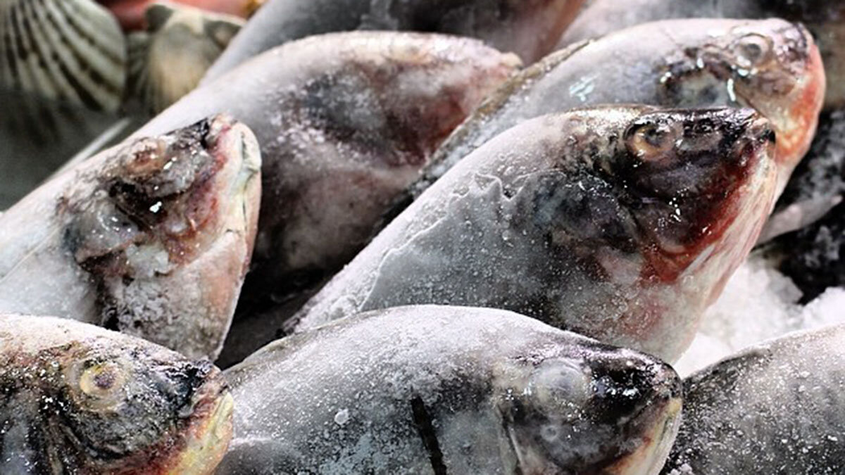 Рыба Замороженная рыба