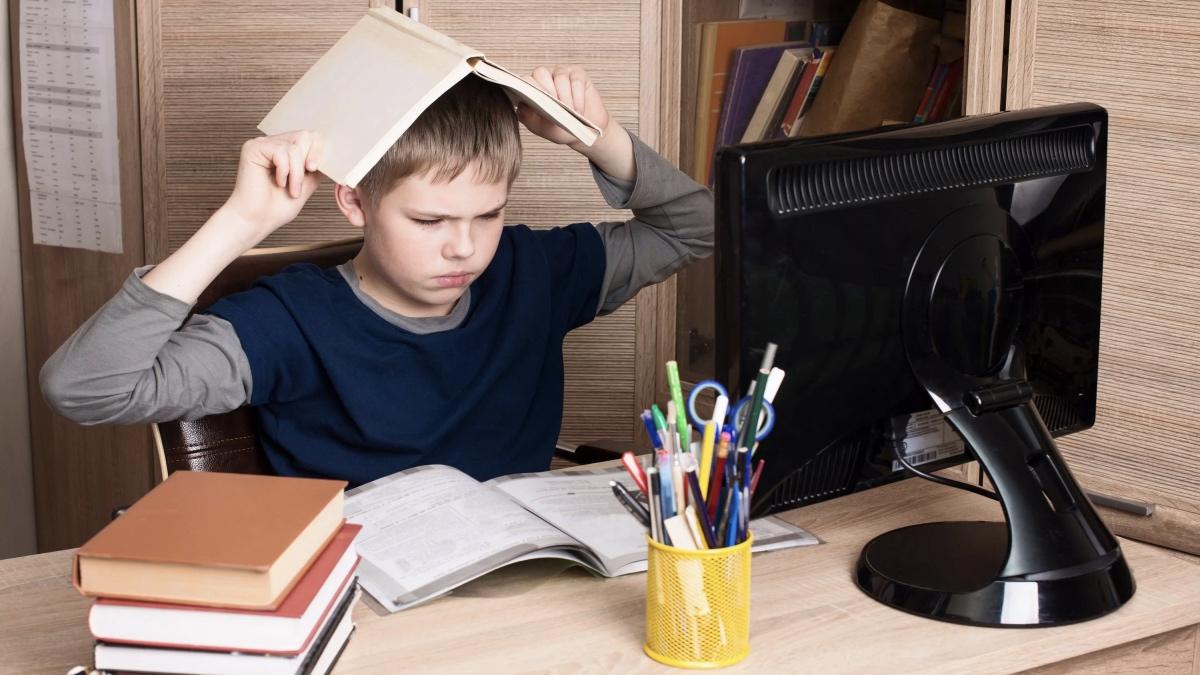 школьник на домашнем обучении