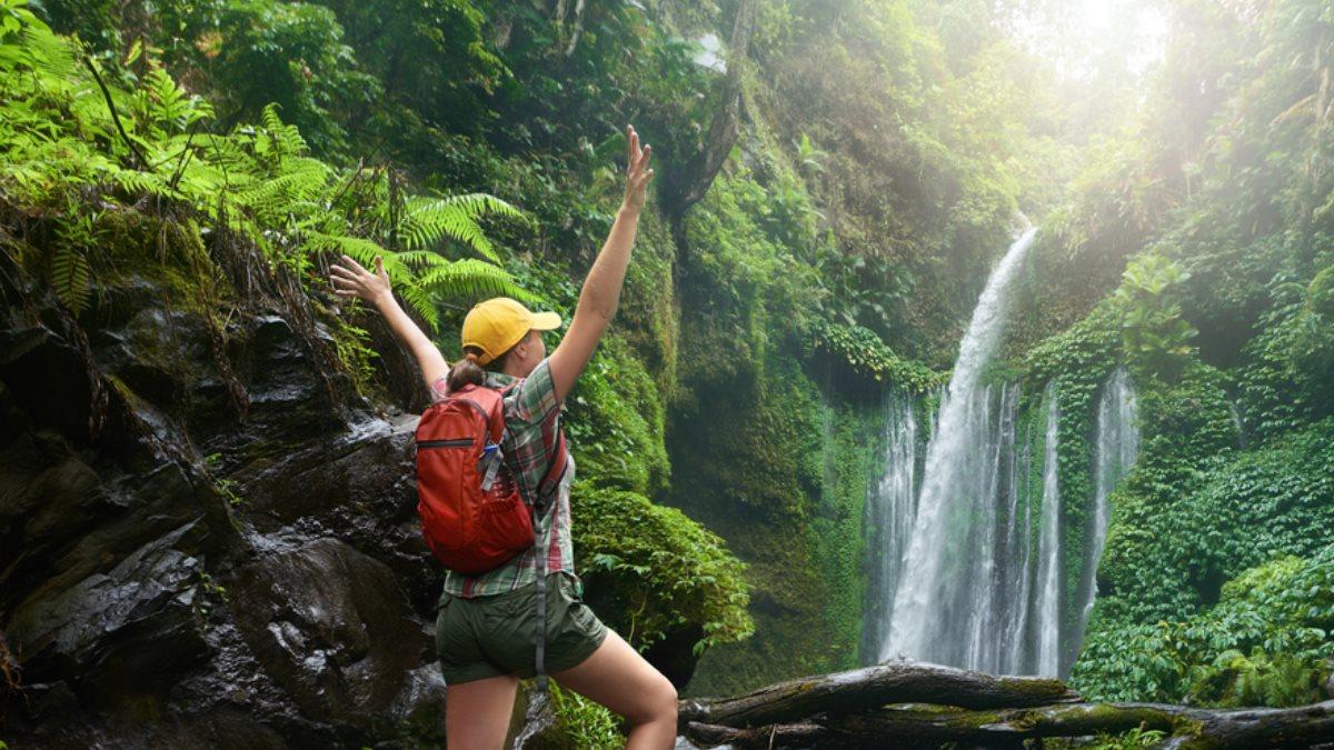 Экотуризм джунгли