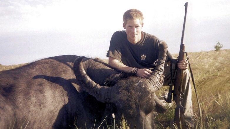 Принц Гарри рядом с трупом убитого им буйвола