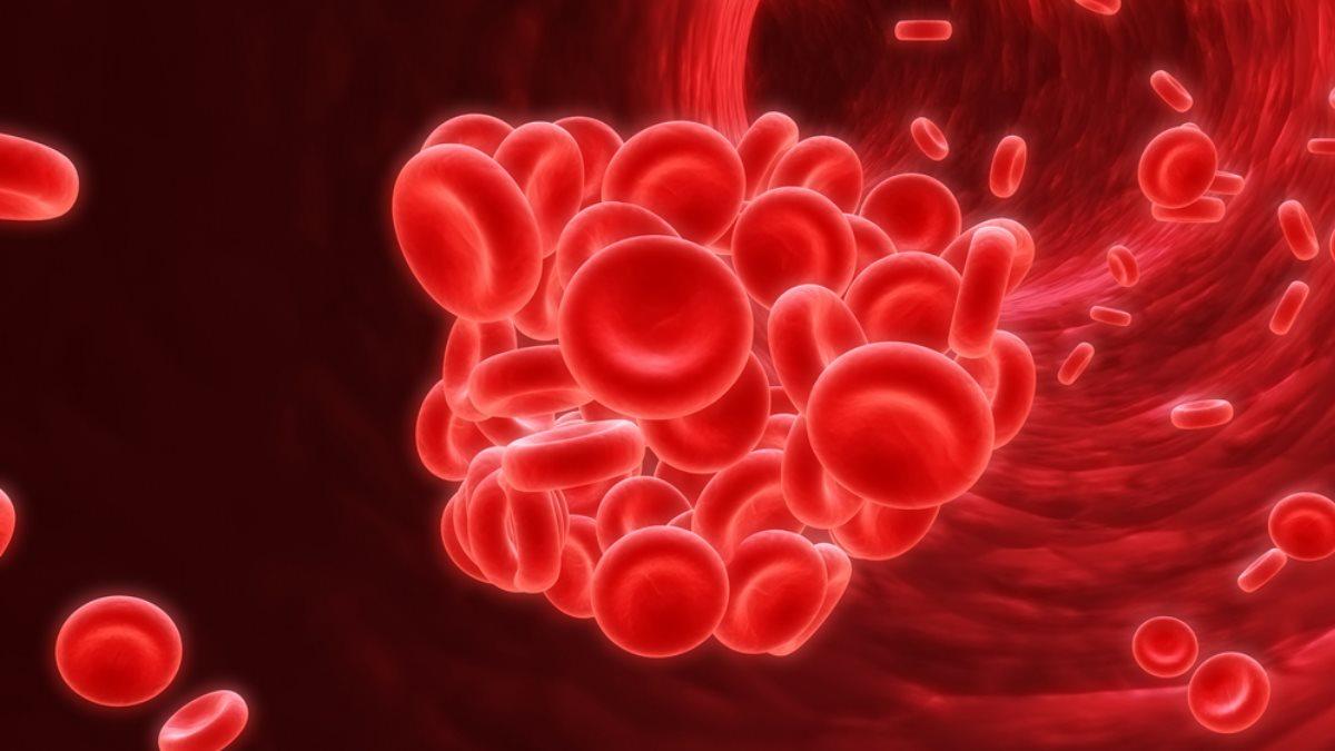 Тромбы в сосудах сосуды кровь