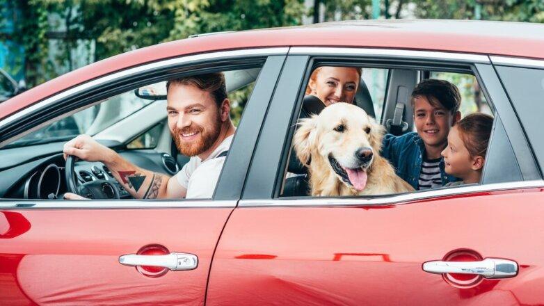 Семья в автомобиле с собакой