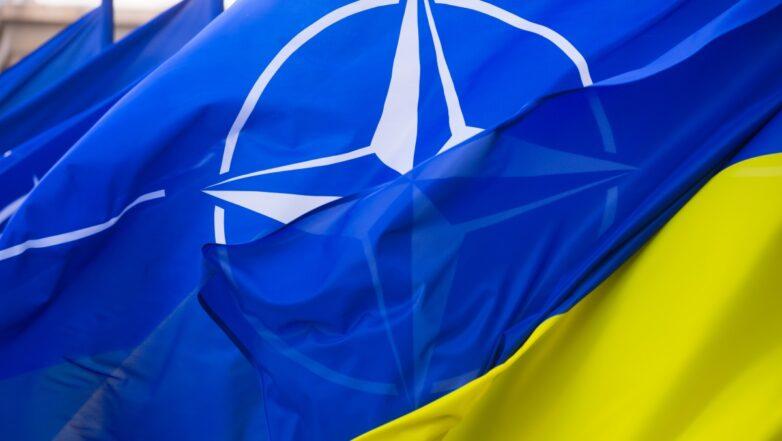 НАТО Украина флаги крупно