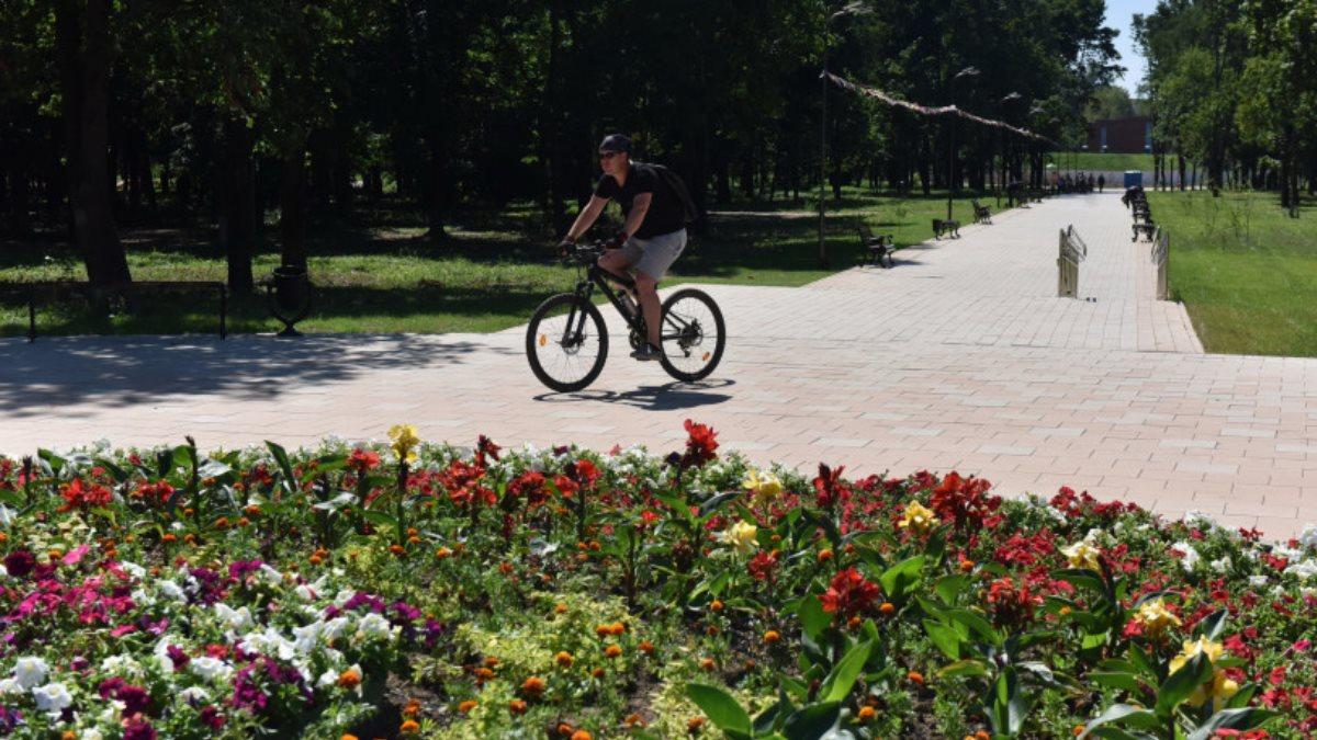 Погода тепло парк велосипедист