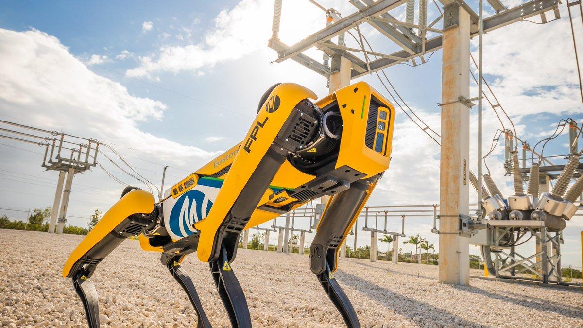 робот-пес Spot Boston Dynamics