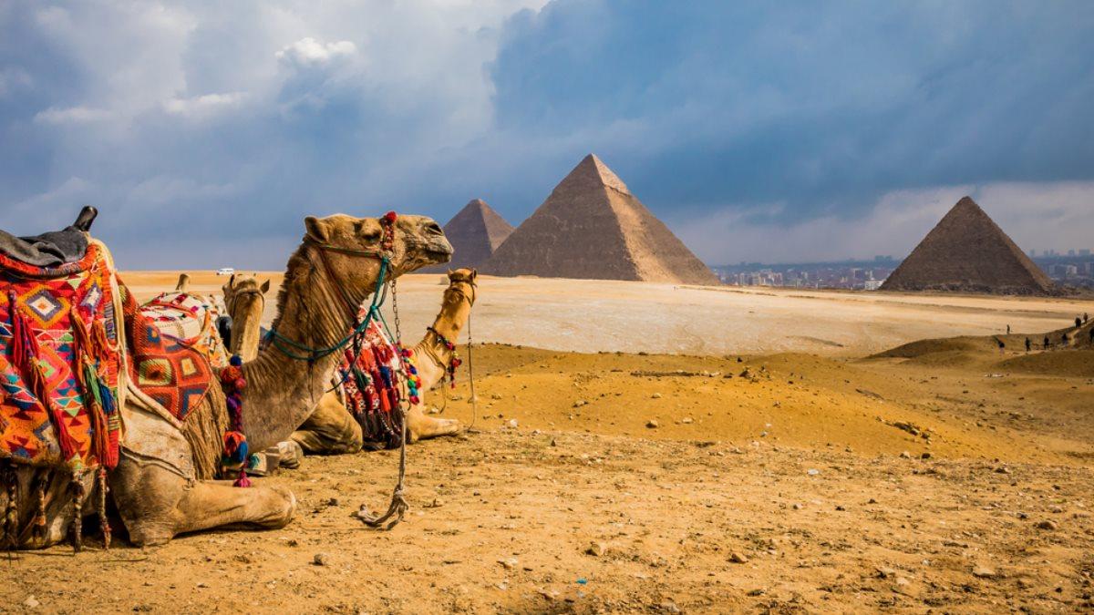 Египет туризм пирамиды верблюды