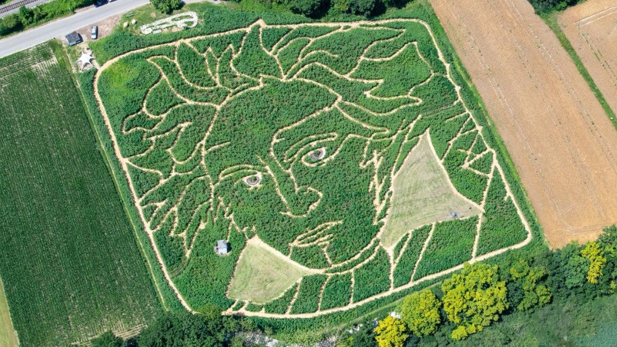 В Германии создали гигантский лабиринт в виде композитора Людвига ван Бетховена