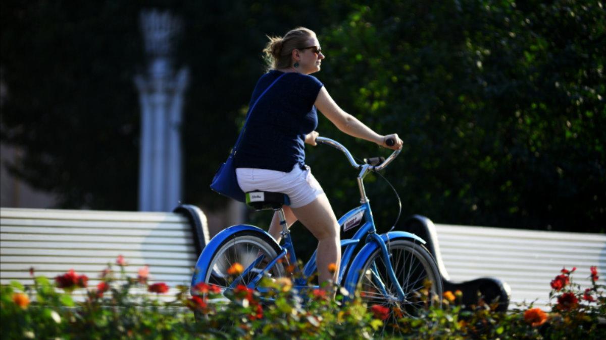 Погода тепло Парк велосипедистка цветы