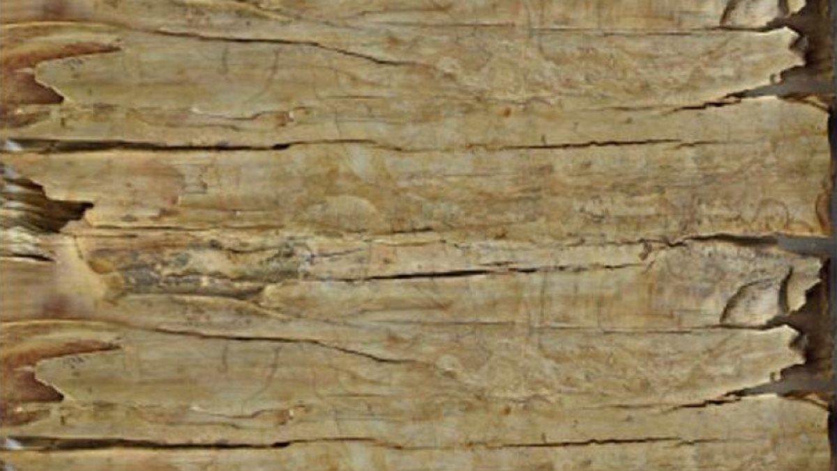 Рисунки боевых верблюдов на бивне сибирского мамонта