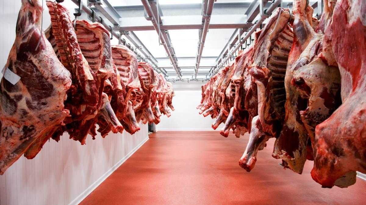 мясо на складе
