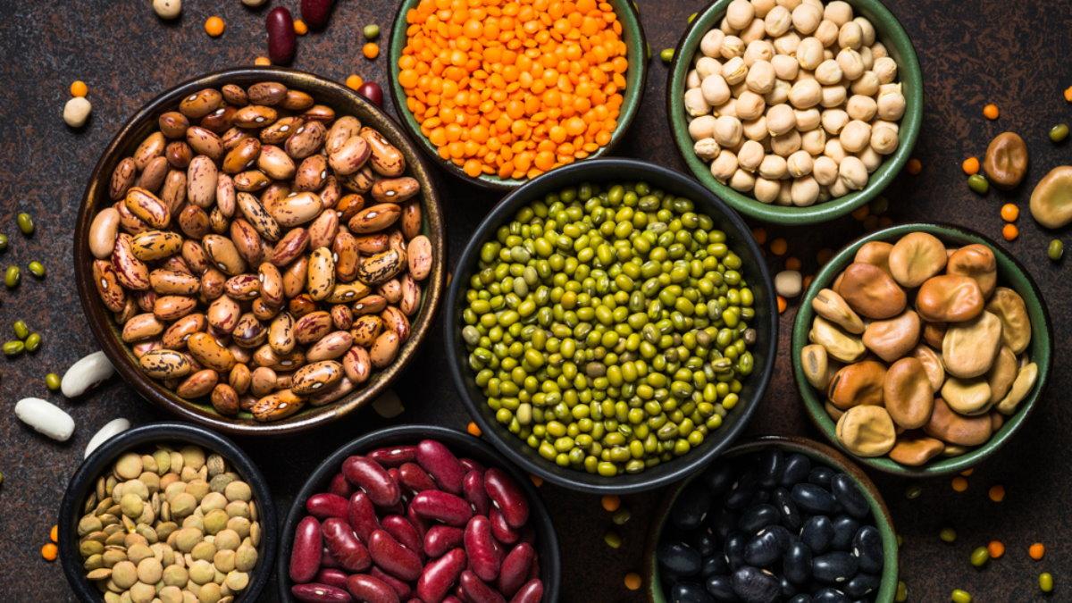 Бобы бобовые - Legumes один
