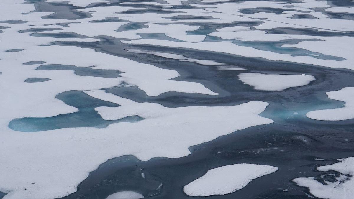 Арктический морской лёд таяние льда глобальное потепление