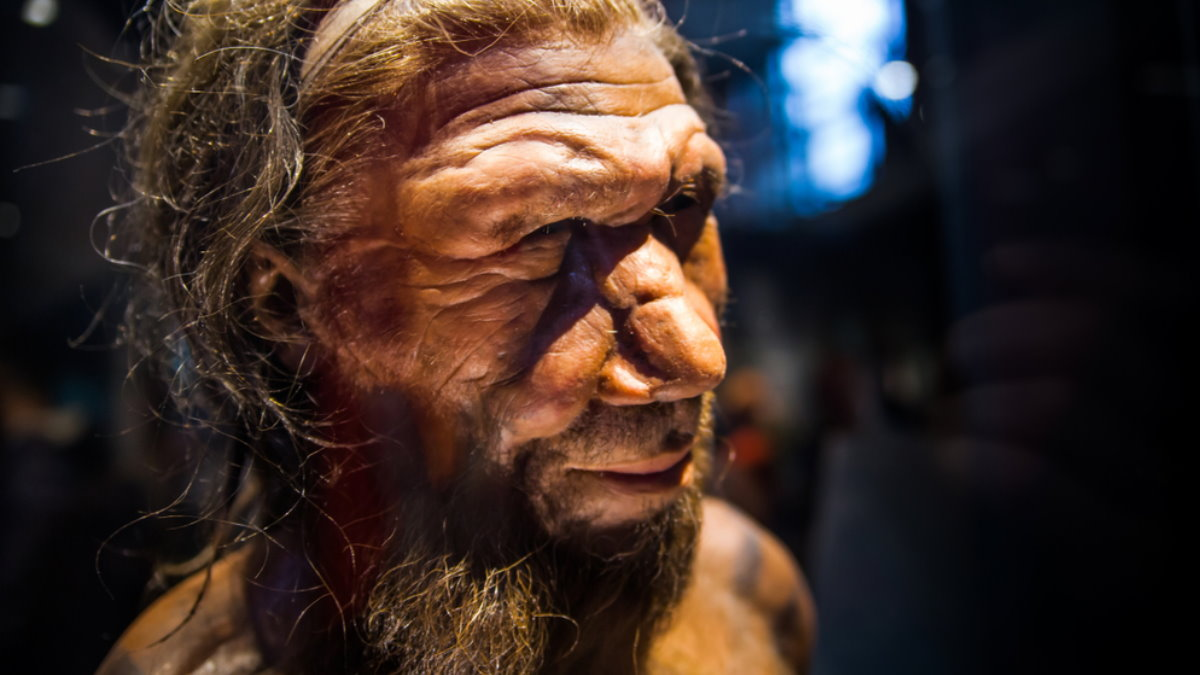 Фигура неандертальца в музее естествознания Лондона неандерталец