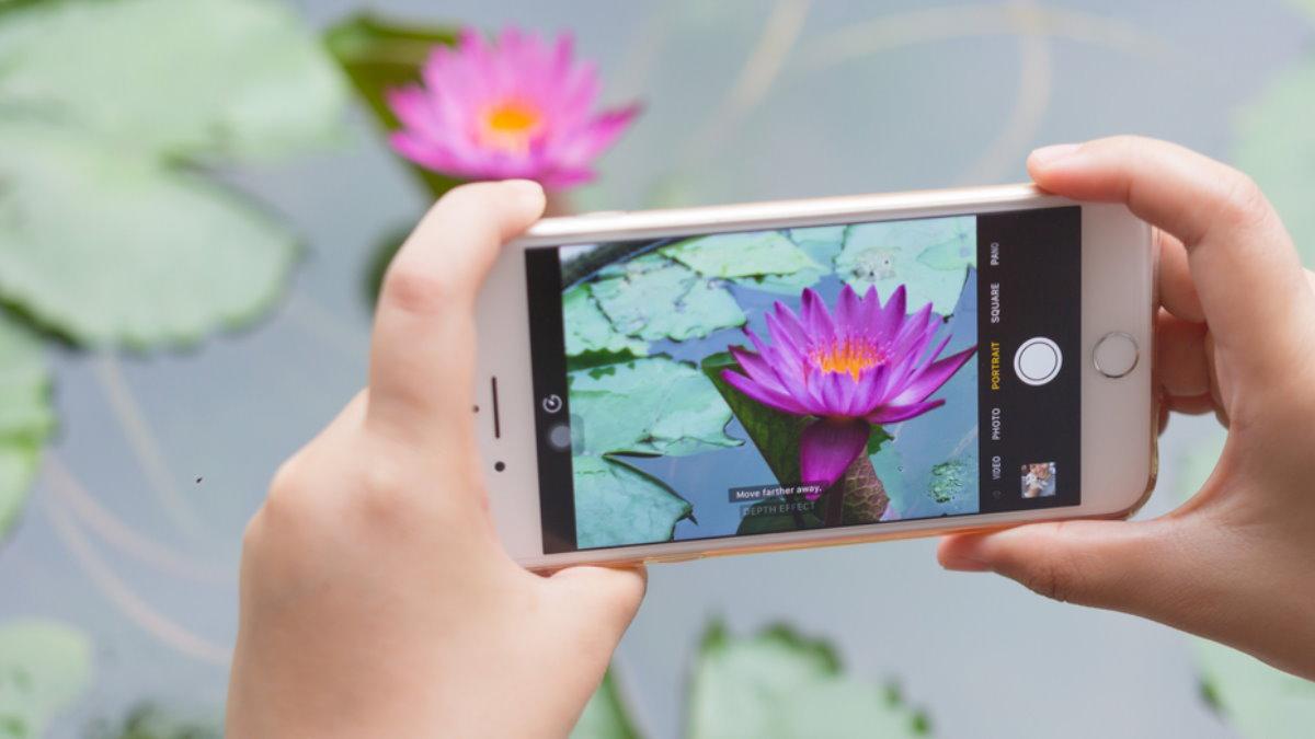 Apple iPhone 7 фотография фотографировать