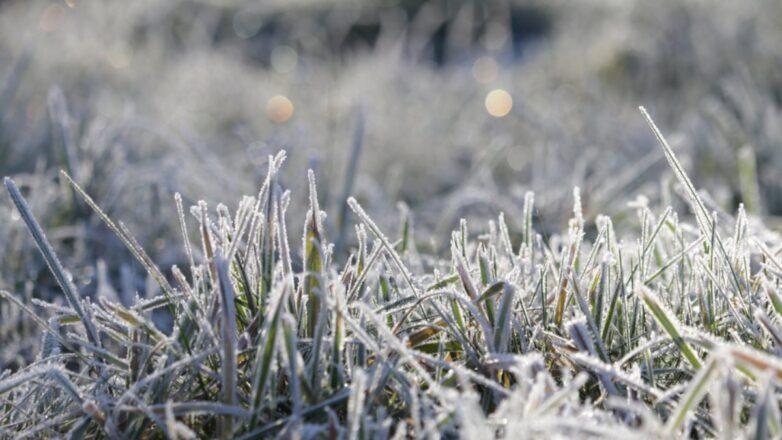 Погода иней заморозки похолодание пять