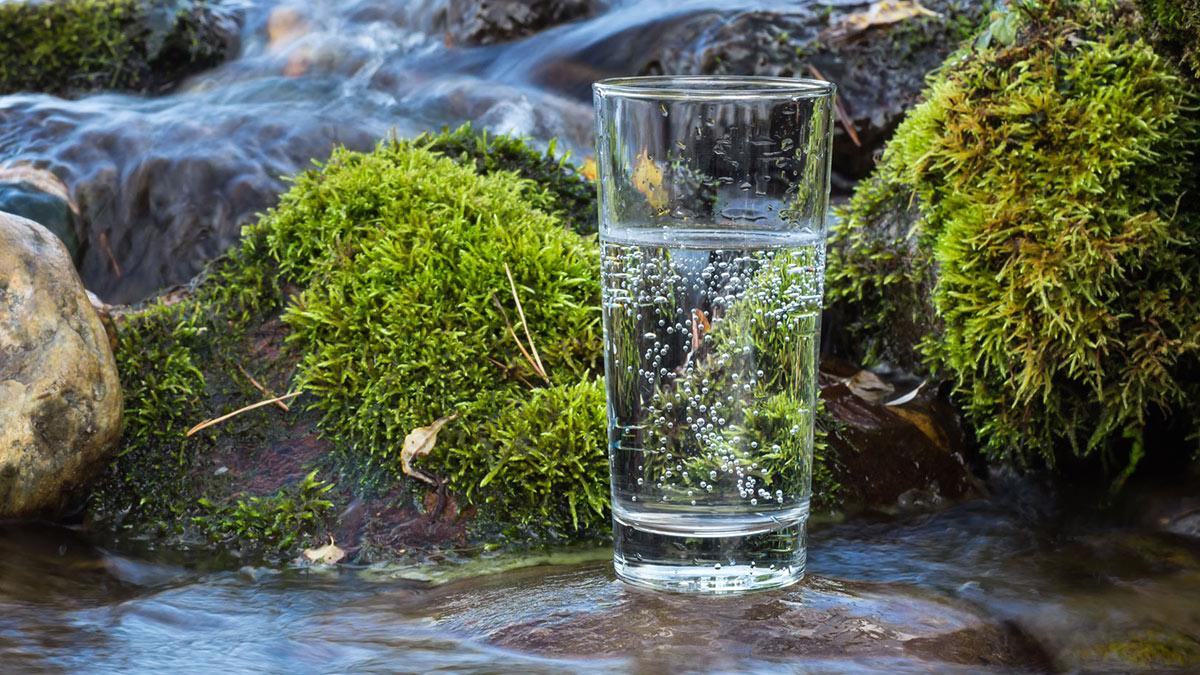 минеральная вода газированная источник