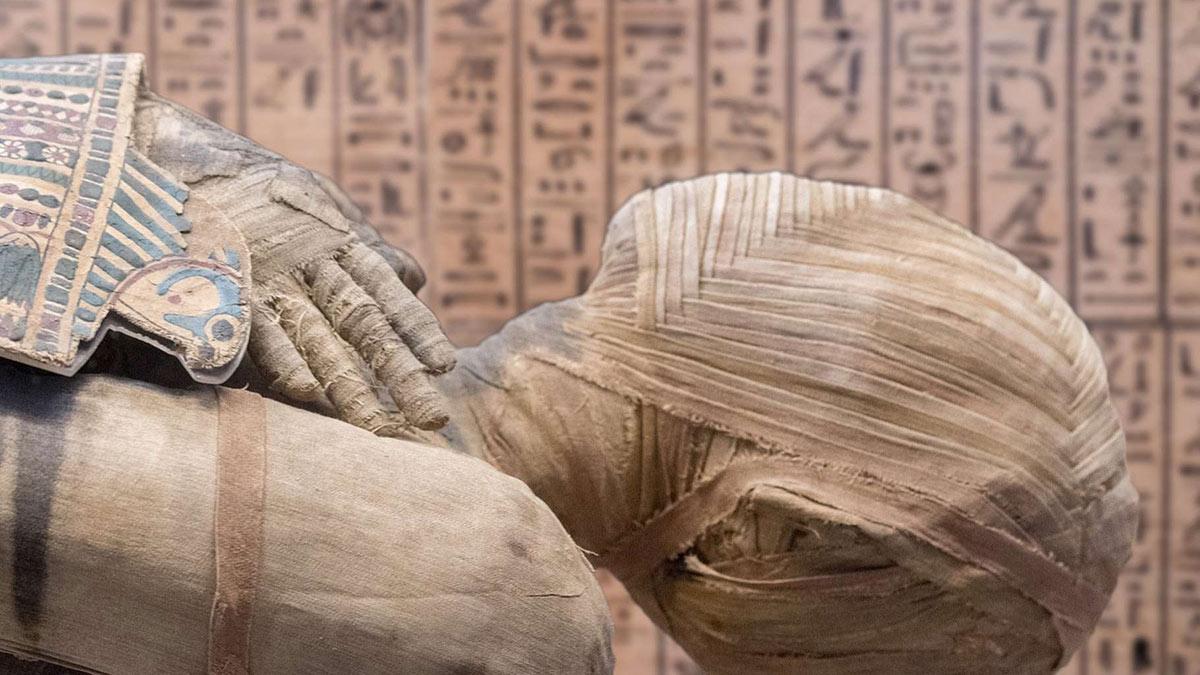 мумия Египет саркофаг древности археология