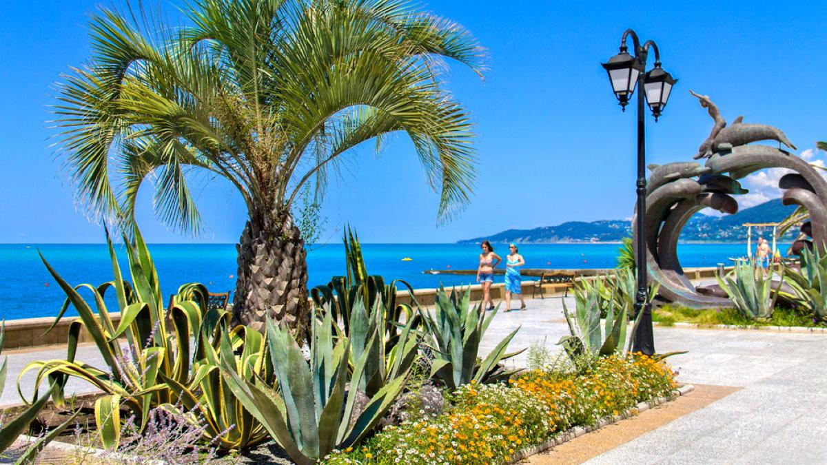 Сочи набережная курорт туризм
