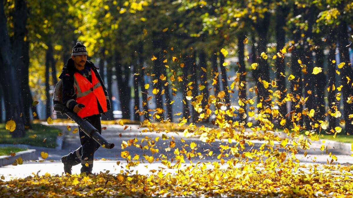 Мужчина убирает листья в парке