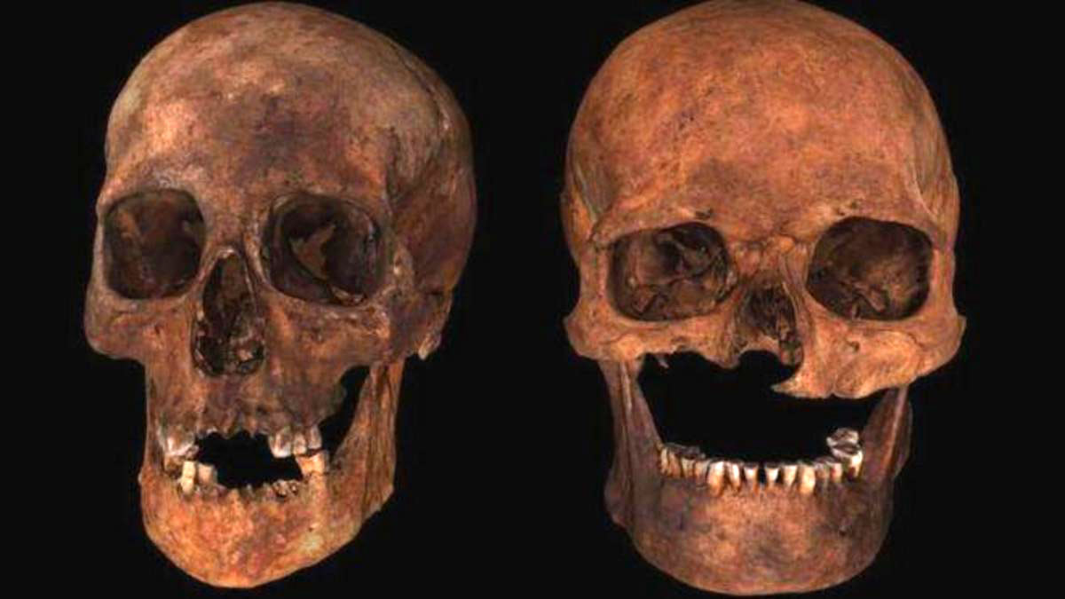 черепа останки археология исследование Британия