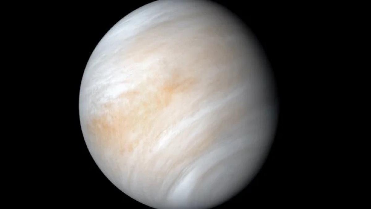 Венера один