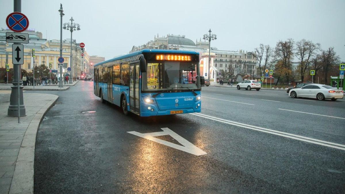 Выделенная полоса общественный транспорт автобус один