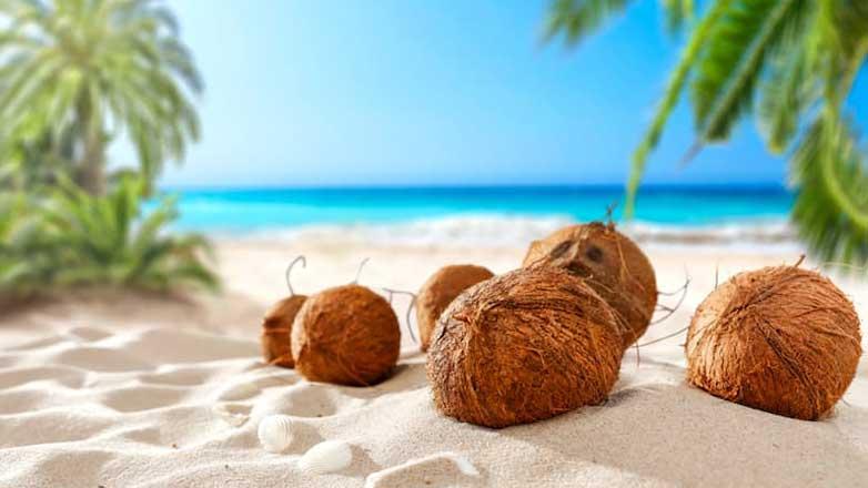 кокосовое масло ковид