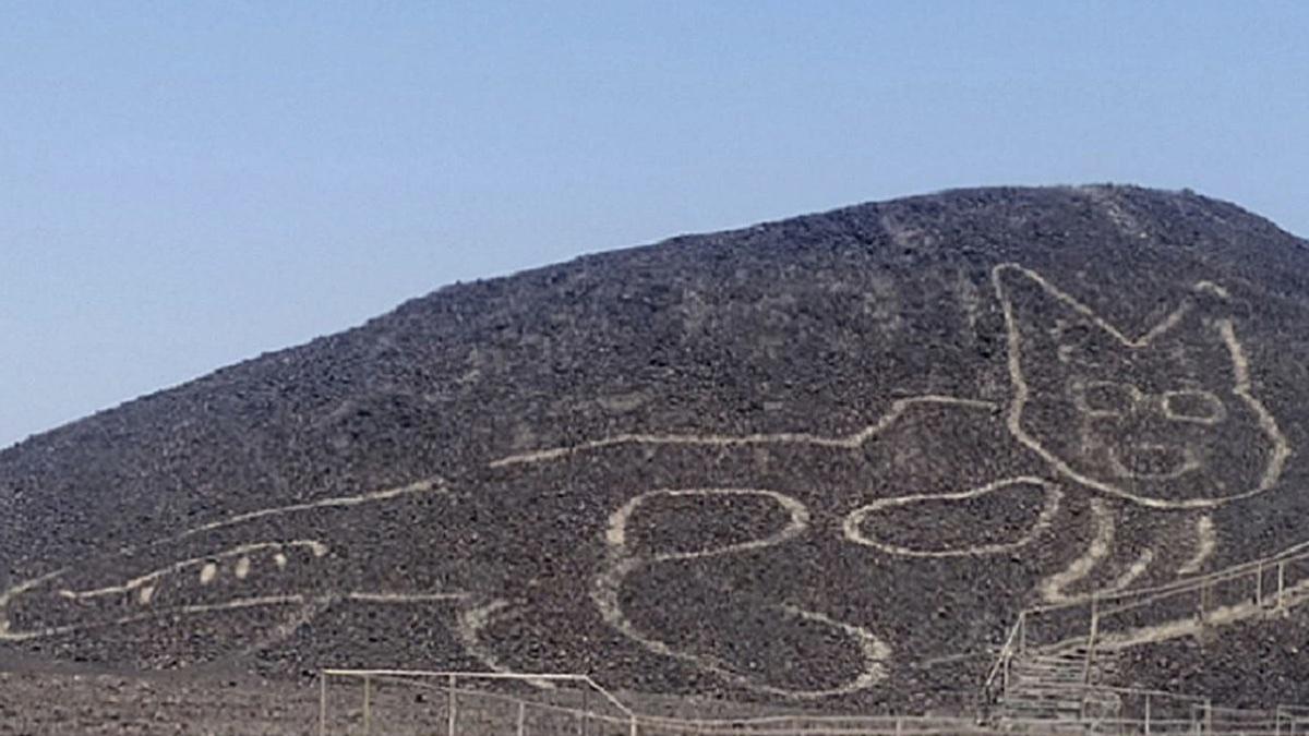 Загадочный 37-метровый кошачий геоглиф обнаружен в Перу недалеко от знаменитых линий Наска