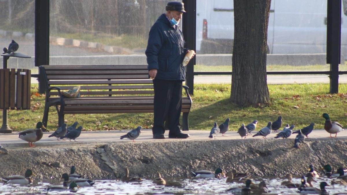 прогулки в Москве