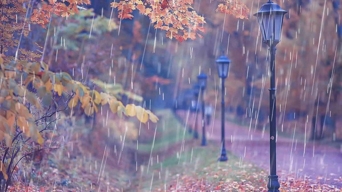 Осень дождь тепло погода