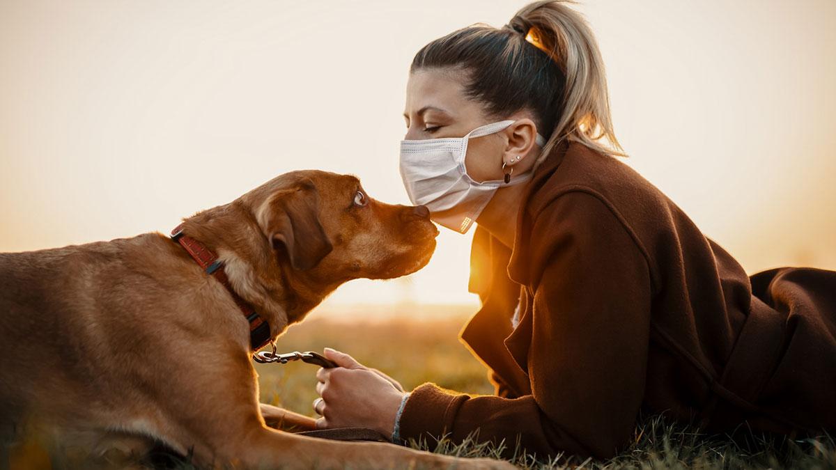 женщина в маске с собакой коронавирус животные