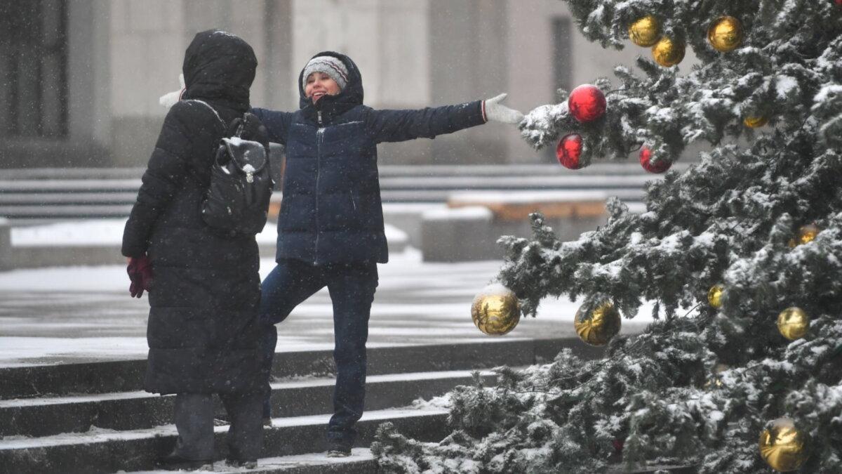Погода снегопад зима ёлка