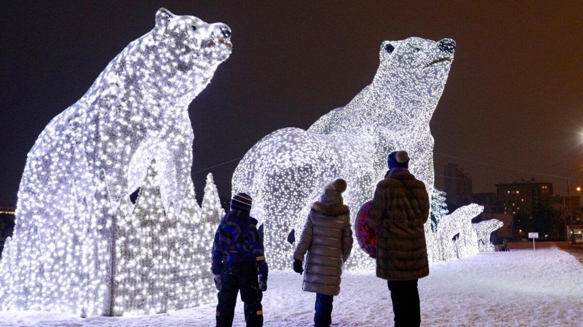 Погода Москва зима медведи