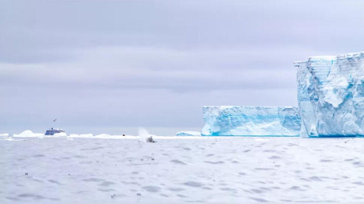 Экспедиционный корабль Эксплорер приближается к краю айсберга A-68a