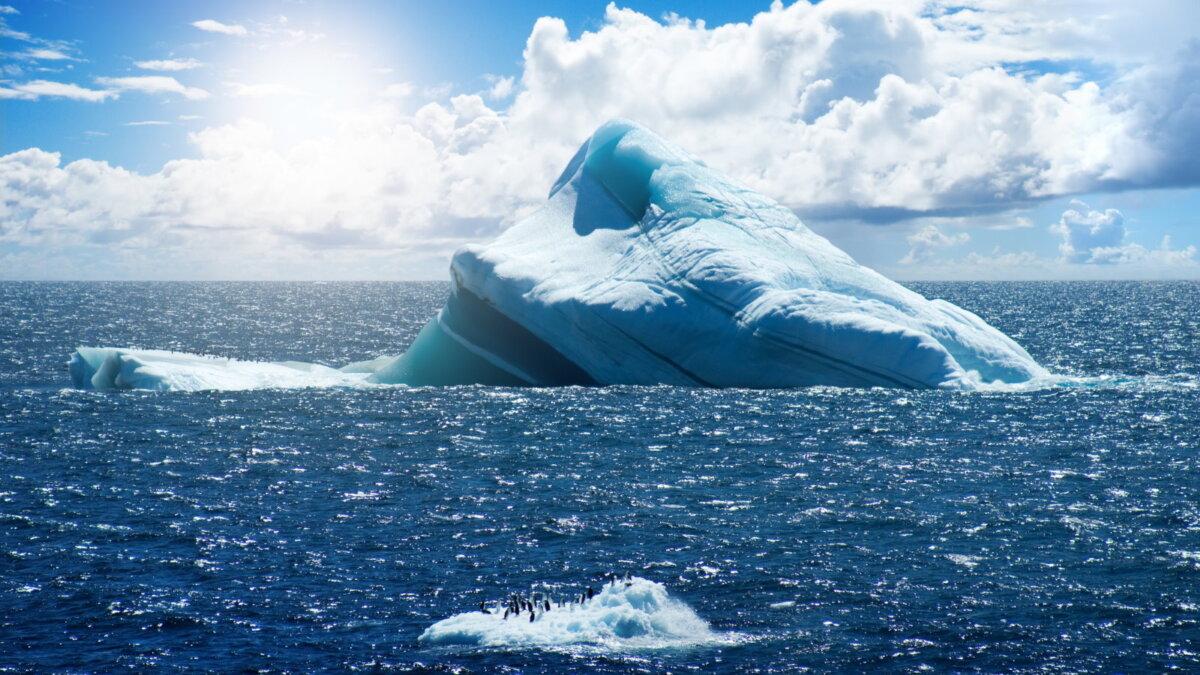 Северный полюс Арктика океан айсберг пингвины