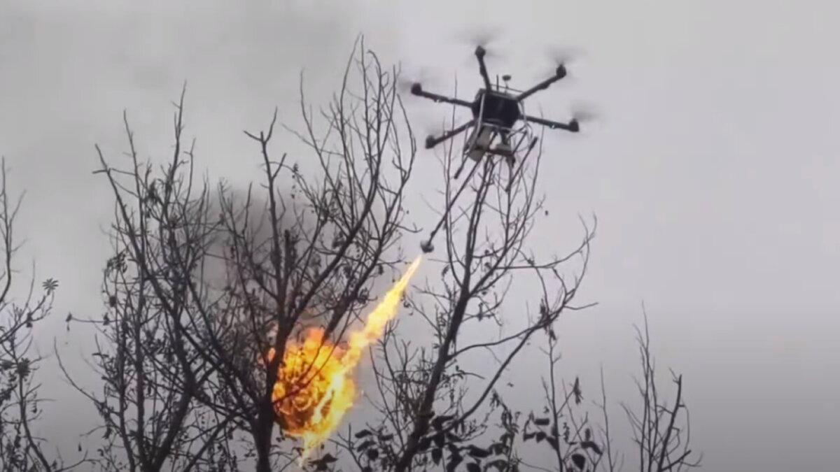 Дрон с огнемётом сжигает осиные гнезда в Китае