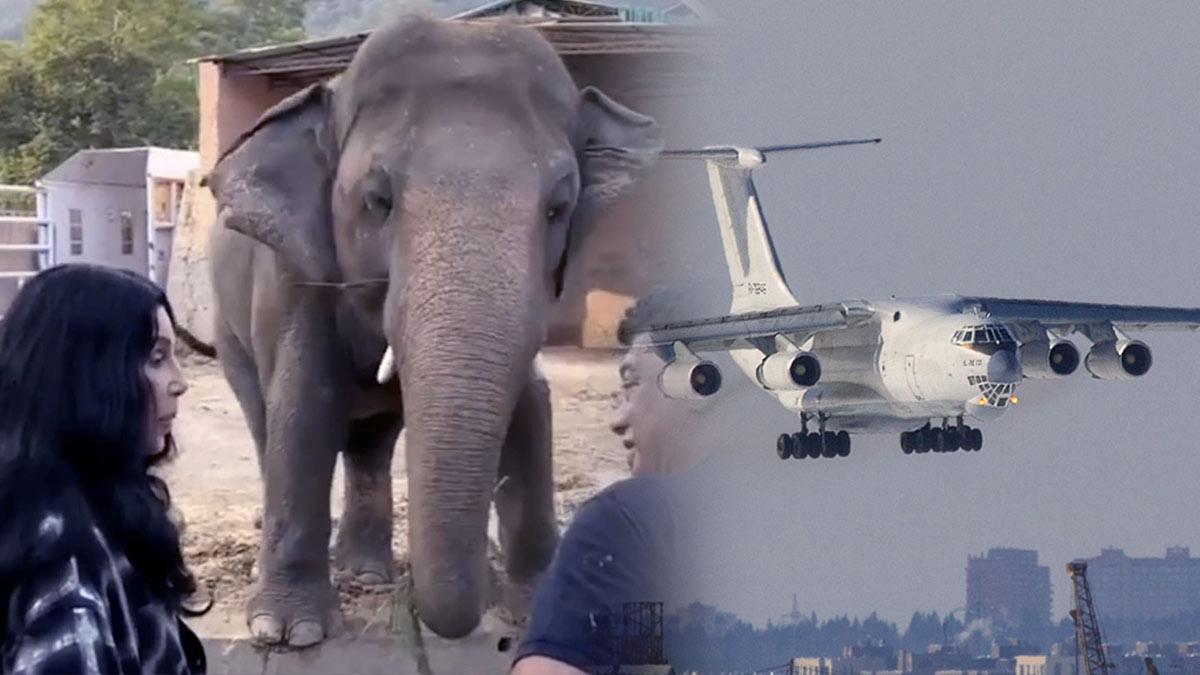 Ил-76ТД слон Кааван Шер