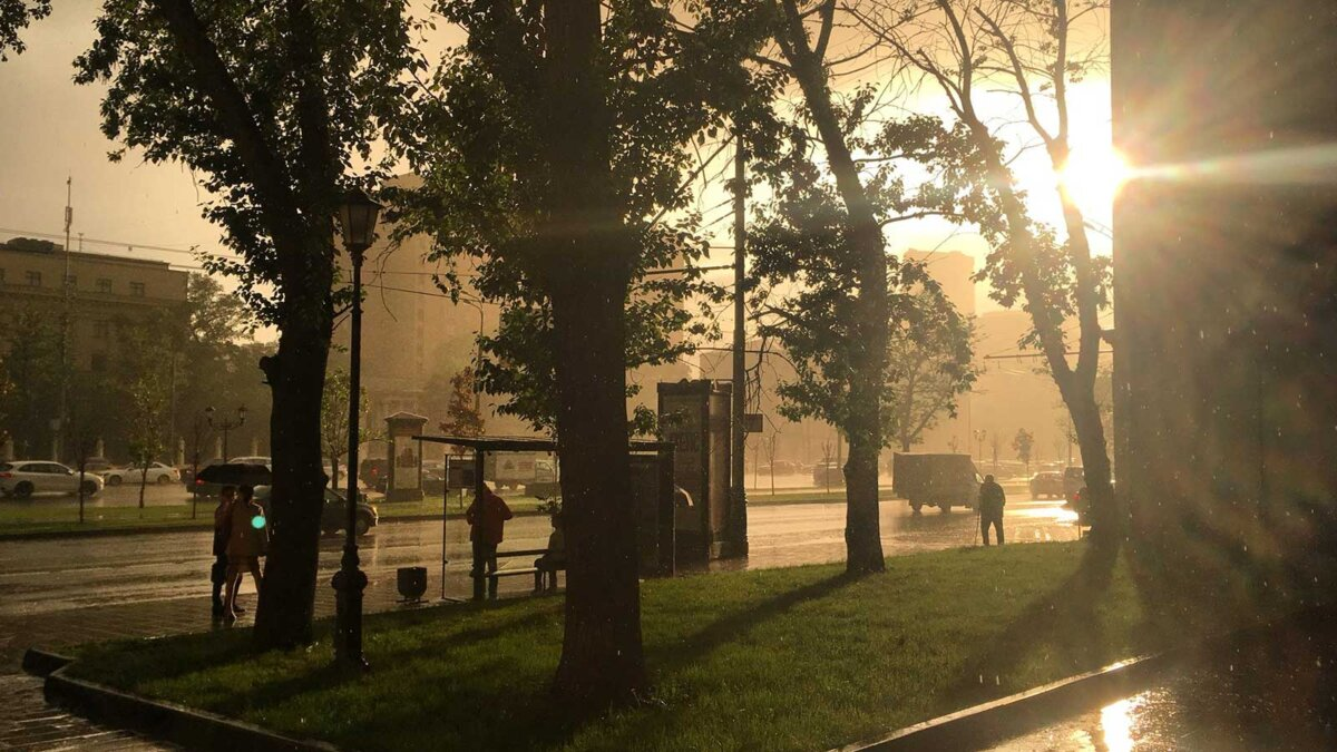 Москва люди дождь солнце остановка улица