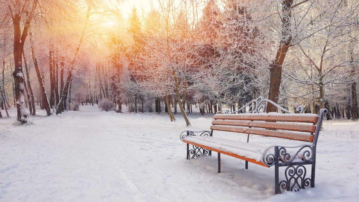 Погода зима парк лавочка weather Winter Park