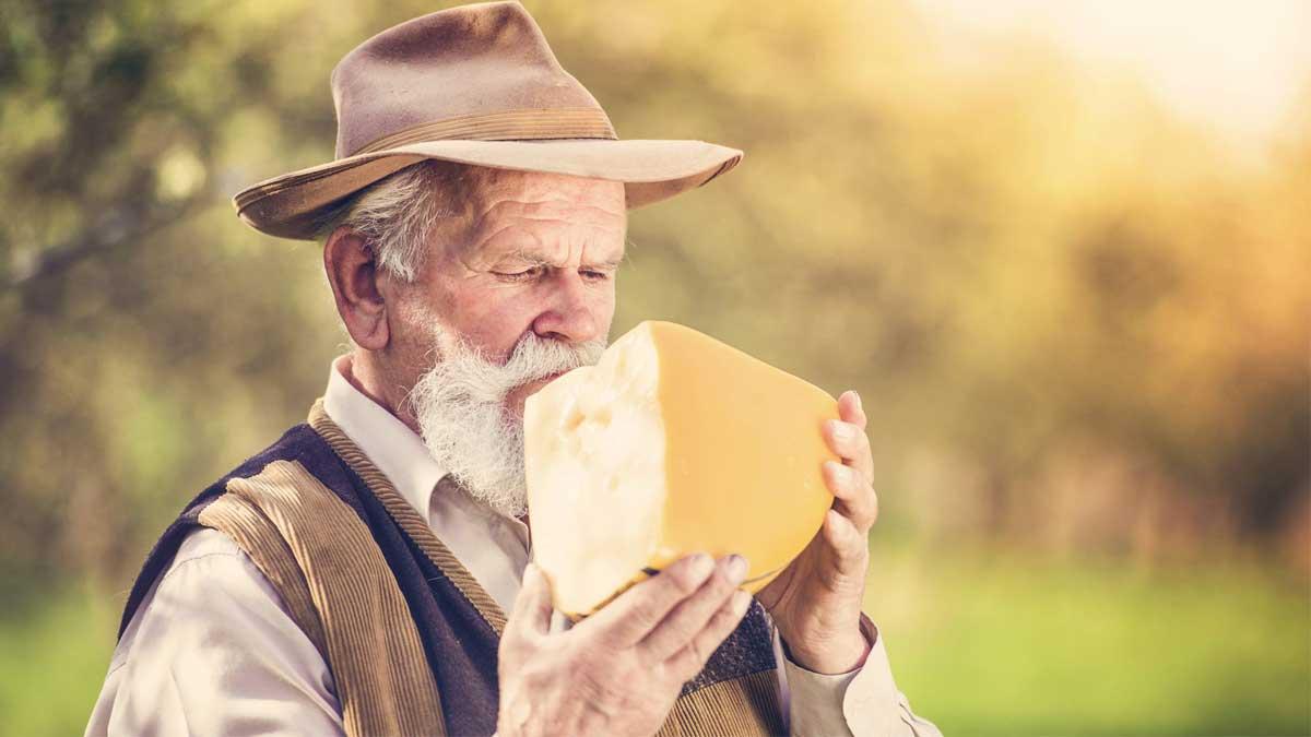Пожилой мужчина и сыр Senior farmer with organic cheese outside in green nature