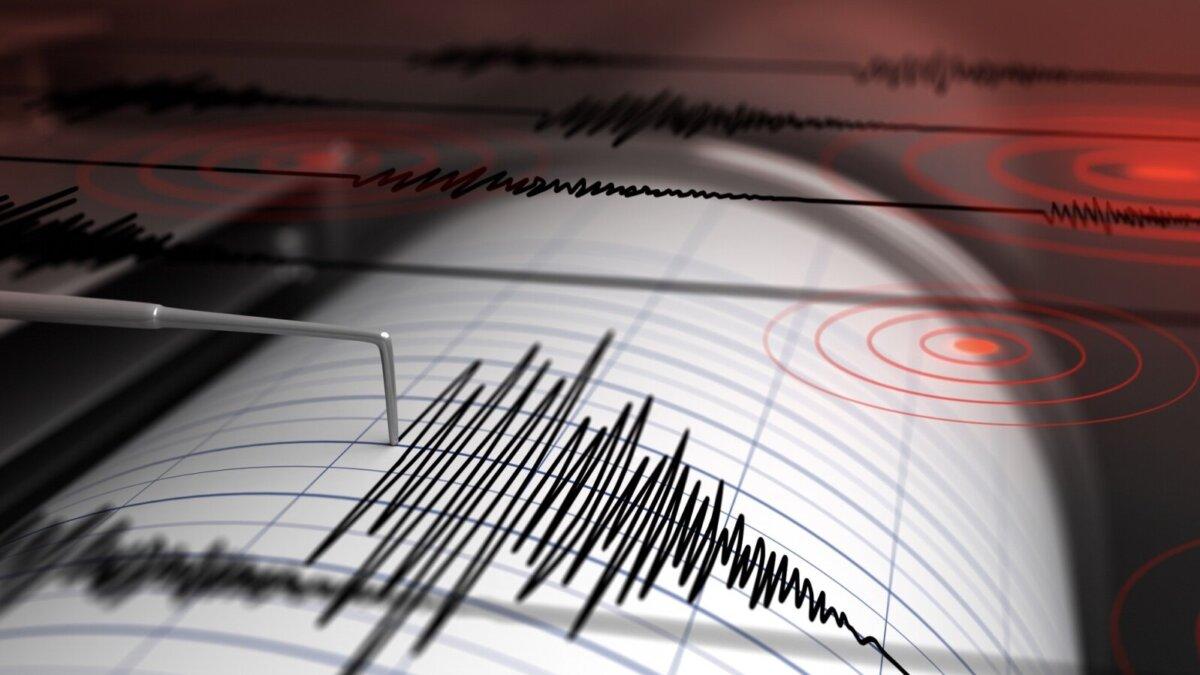 Землетрясение сейсмограф