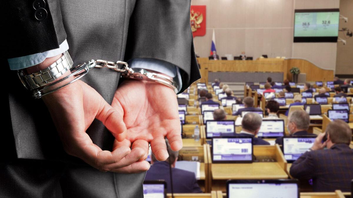 заседание госдумы рф человек в наручниках лишение свободы