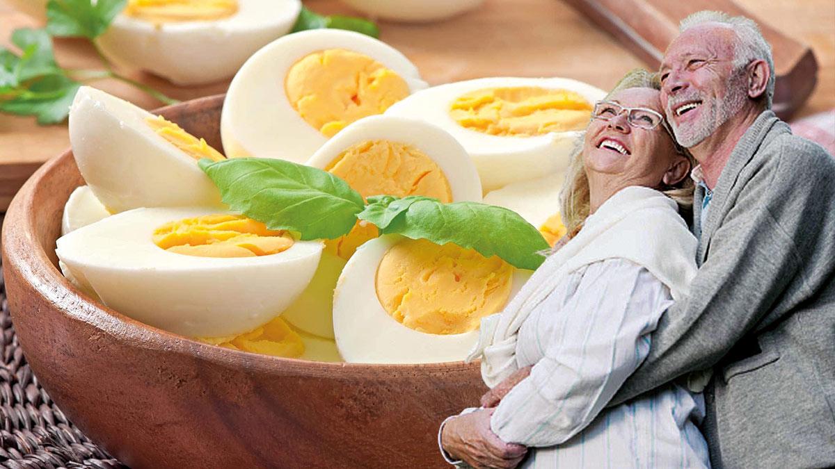 куриные яйца долголетие семейная пара
